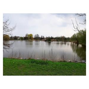 Oprávnění na Plaňanský Velký rybník